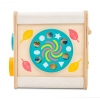 PL105-Petit-Activity-Cube-Weather-Wheel.jpg