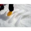 Quut_CUPPI_inuse_snow-6.jpg